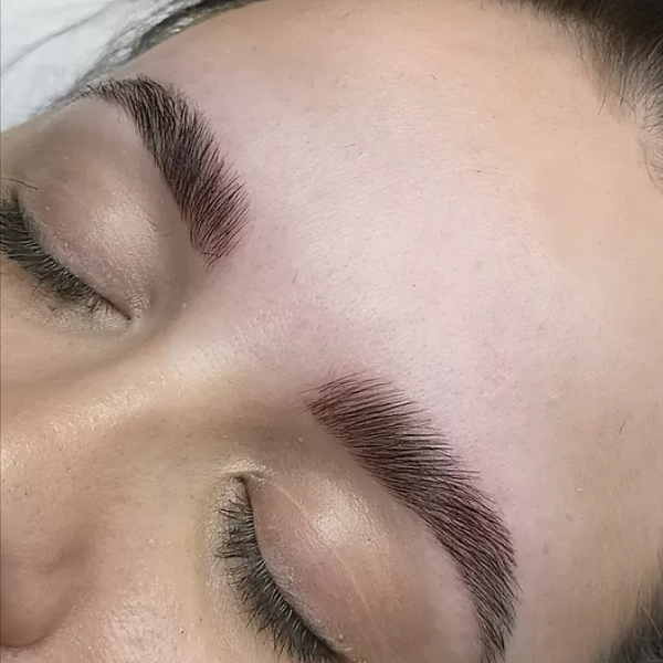 Heather Dyck Beauty Eyebrow Lamination 3