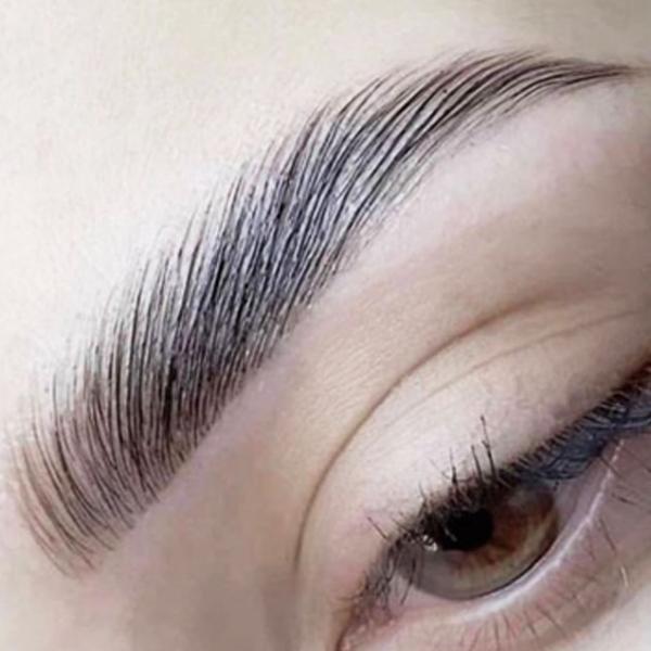 Heather Dyck Beauty Eyebrow Lamination 4