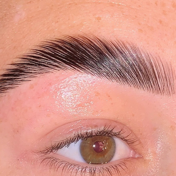 Heather Dyck Beauty Eyebrow Lamination 5